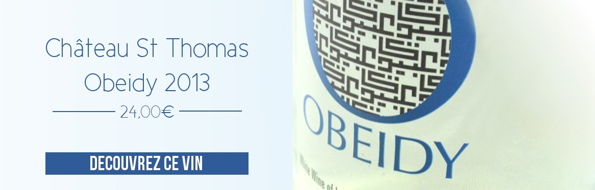 Obeidy 2013